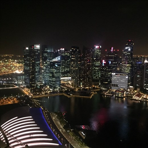 Singapore Skyline from the Skybar