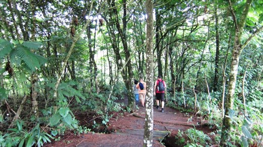 Hiking Arenal Volcano, American amigo from our hostel and Jorje.