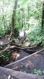 Very steep hiking up Chato Volcano. Why don't people take hiking poles for this sort of thing.: by jorjejuanita, Views[188]