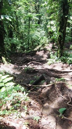 Hiking Chato Volcano.