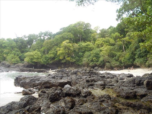 Forest, beach sand, rocks, sea water all in one place.