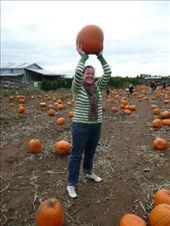 Shona is the pumpkin queen.: by josh_shona, Views[162]