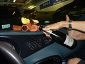 Monty having a sip of  champagne on the ferry to the island: by josh_shona, Views[126]