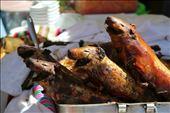 Whole roast guinea pig in the markets: by joshandkaren, Views[137]