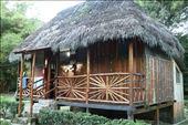 Our jungle lodge accommodation: by joshandkaren, Views[93]