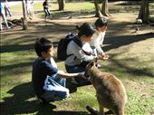 Feed Kangaroo: by joshuastephs, Views[37]