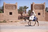 A regular sight along the streets and towns of Morocco are men and their donkeys.  In his white flowing djellaba, this Moroccan man rides sidesaddle along the road near the dessert town of Rissani.  Donkeys are also regularly used to haul carts and carry supplies.: by joymelchiori, Views[640]