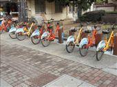 Boris' Bikes - Zhangjiagang Style: by jrbacon, Views[93]