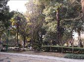 Suzhou Park: by jrbacon, Views[254]