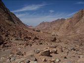 The Barren landscape of Mt. Sinai: by jreuter, Views[1253]