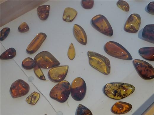 Amber in museum - San Cristobel