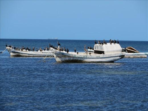 Gulk Mexico off Malecon Campeche