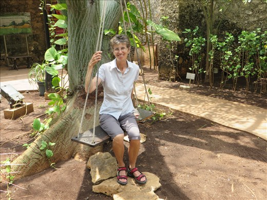 In a little botanic garden - Campeche