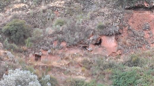Pisac ruins - tombs in hillside
