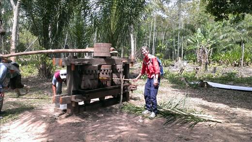 Jungle - A local hand driven sugar cane press