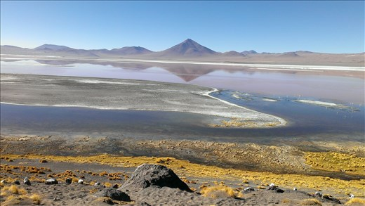 SFT - Day 3 - Morning reflections on Laguna Colorada