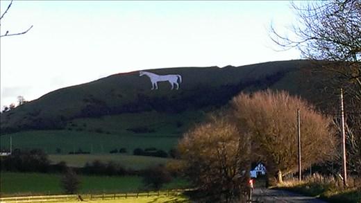 Westbury - chalk horse in hillside