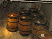 Montepulciano - wine cellar - on way to tasting session: by jugap, Views[125]