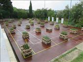 Siena - garden cum playing court - pallet garden beds: by jugap, Views[90]