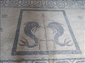 Rhodes - mosaics on floor - Palace of Grand Master: by jugap, Views[13]