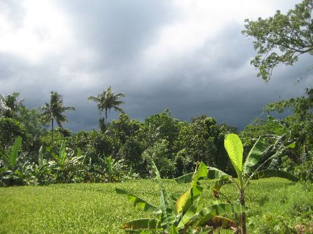 rainy season view from Sensasi Bungalows, Ubud
