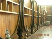 25,000L of wine in each barrel! That would (almost) keep me going until christmas!: by justinzani, Views[232]