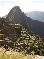The lower slopes of Machu Picchu in the morning sun....it really lives up to all the hype.: by justinzani, Views[240]