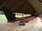 A 35m Maori war canoe (called a waka) with Ali in background: by justinzani, Views[861]
