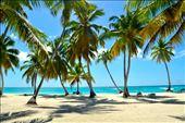 Saona Island, Dominican Republic : by kaitnarciso, Views[84]