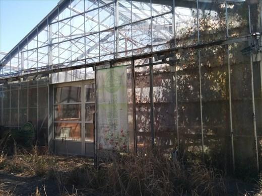 Closed coffee gardens