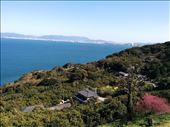 View from the gardens. I want to live in that house!: by kakimono, Views[67]