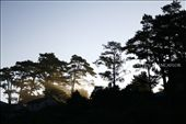 Taken early one morning from our window in Sagada: by kala, Views[289]