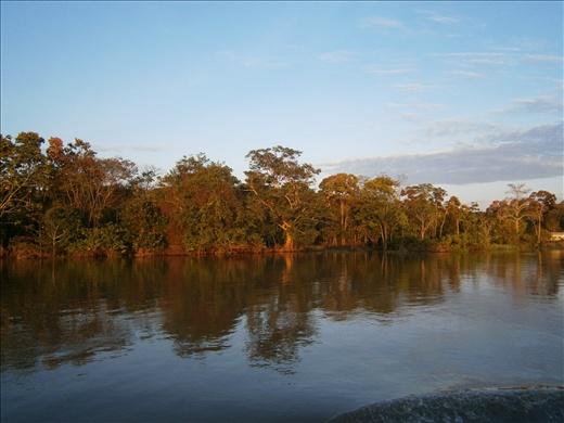 Crusing the Amazon