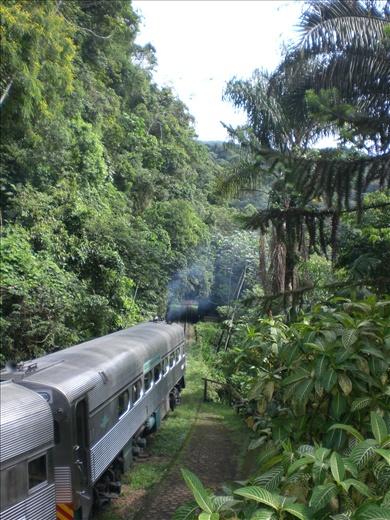Curitiba to Paranagua train