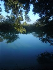 This was taken at a bird sanctuary in Chennai, India. This part of of the country is overgrown with beauty. Did not expect to see something like in a place so densely populated. Yet, the beauty of this photo lies in the reflections. The reflection of the blue sky on the water with the green lush coming on top covering sky, just simply amazing. And over all, this was taken through a camera phone.: by kartheeban, Views[85]
