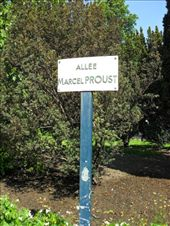 Can't believe Proust only got an Allee: by kashikoi, Views[185]