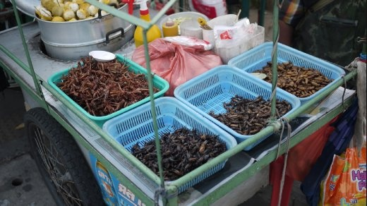 Bugs in a street stall