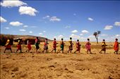 The Masai Men introducing their women, through the traditional dance: by katherinefraser, Views[493]