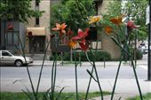 Street sculpture Mont Royale plateau: by kathryn_hendy_ekers, Views[166]