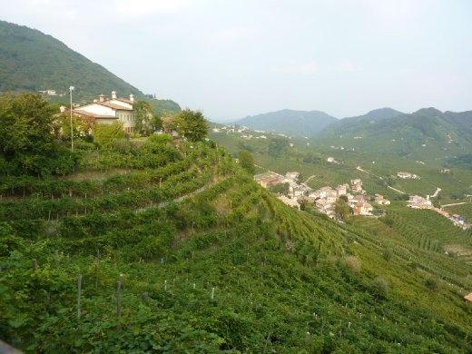 Vineyards of Cartizze