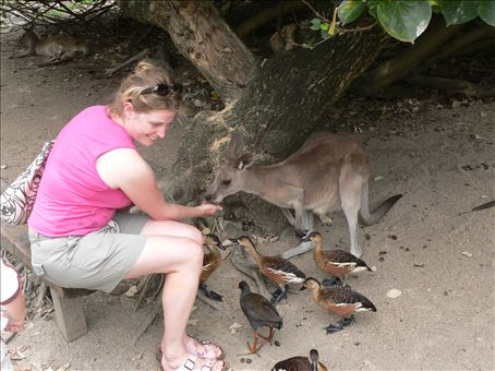 Feeding the kangaroos (hope you're impressed after last time Nicole!)