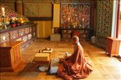 A Buddhist monk at Daeheungsa Temple in a room with hundreds of small Buddhas: by katria, Views[581]
