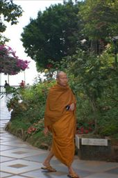 Random Monk!! There everywhere!!: by kayleighandhanna, Views[145]