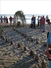 coconut lines aisle: by kazdavevaughan, Views[223]