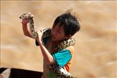 A small boy holds a snake around his body as he approaches a boat of international visitors on the Tonle Sap Lake in the Siem Reap province of Cambodia. He tries to charge people money to take pictures with his snake in order to help support his family.: by kdensmore808, Views[276]