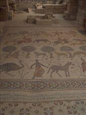 Mt Nebo, mosaic floor: by keera, Views[345]