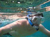 Vinny snorkel: by kelly, Views[152]