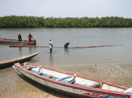 Fishing on the Halahin at Kartong