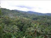 by khwe5401, Views[704]