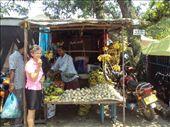 a-olly at the markets: by kiara19, Views[330]